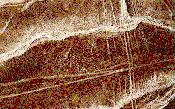 Water Lines of Nazca